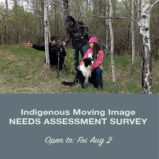 Indigenous Moving Images Survey